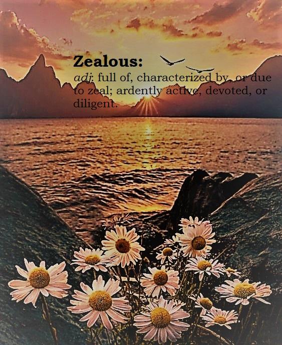 zealous (2)